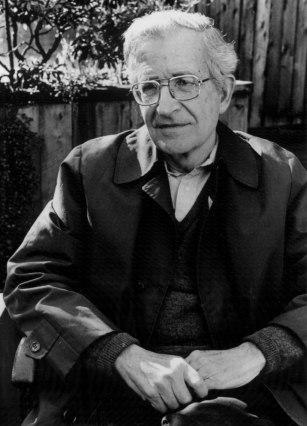 noam-chomsky_big11